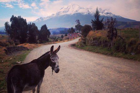volcan Chimborazo, 6268 m