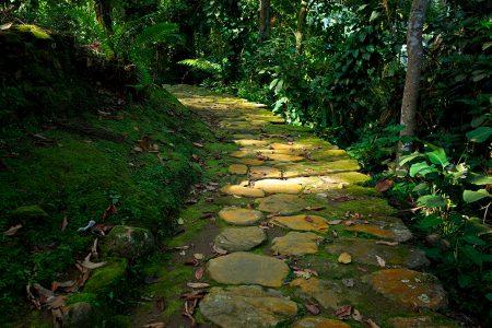 chemin pavé vers la cité perdue de Santa Marta