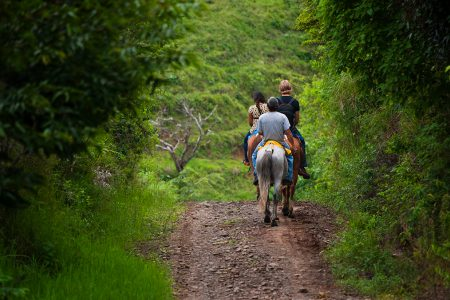 rando à cheval au Costa Rica
