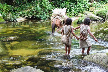 enfants Kogis convoyant une mule