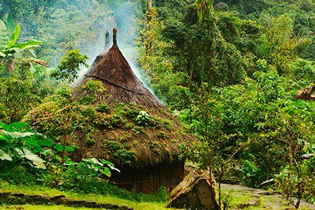 village kogi