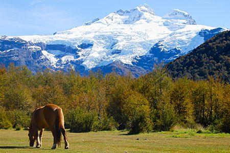 Le mont Tronador, seigneur de Patagonie