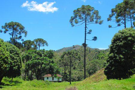 maison, Serra da Bocaina