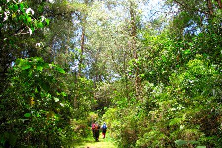 rando dans la Serra da Bocaina