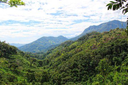 panorama dans la Sierra Nevada de Santa Marta