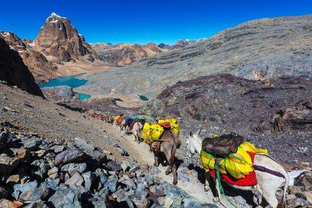 trek dans les Andes péruviennes