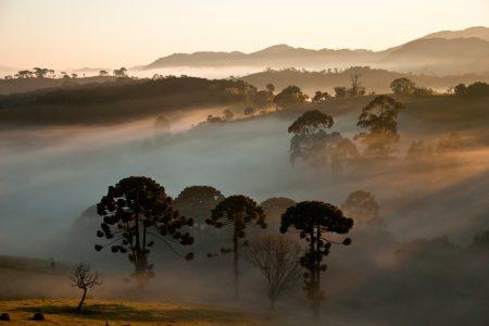 récit de Luc : le trek de la Serra da Bocaina