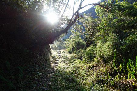 randonnée dans les Yungas